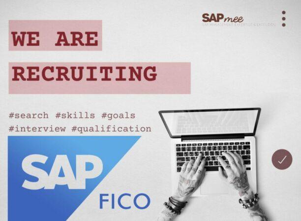 ¿Perfil SAP FI/CO? Te interesa