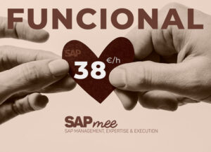 An offer of SAP functional at 38€ per hour